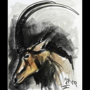 Jean POULAIN – «Oryx»